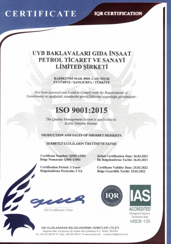 ISO 9001 201529032021